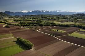"""Pagamenti in agricoltura, aziende agricole Cia: """"Basta promesse, ora vogliamo i fatti"""""""