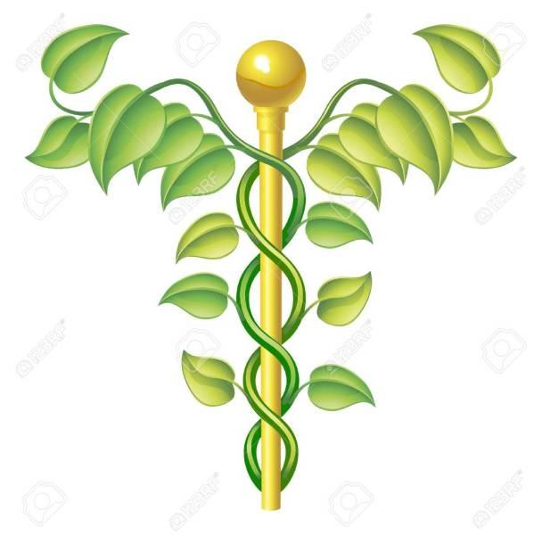 Focus su medicina naturale presso la farmacia comunale del centro storicodi Narni