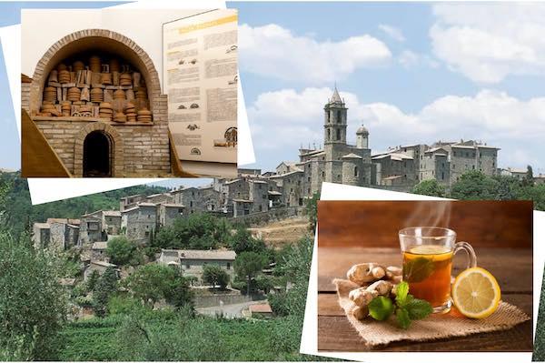 Visite guidate tra Baschi, Antiquarium e tisana al museo