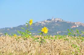 """Vacanze a misura di famiglia con """"Umbria family"""", a Ficulle si presenta progetto sul turismo"""