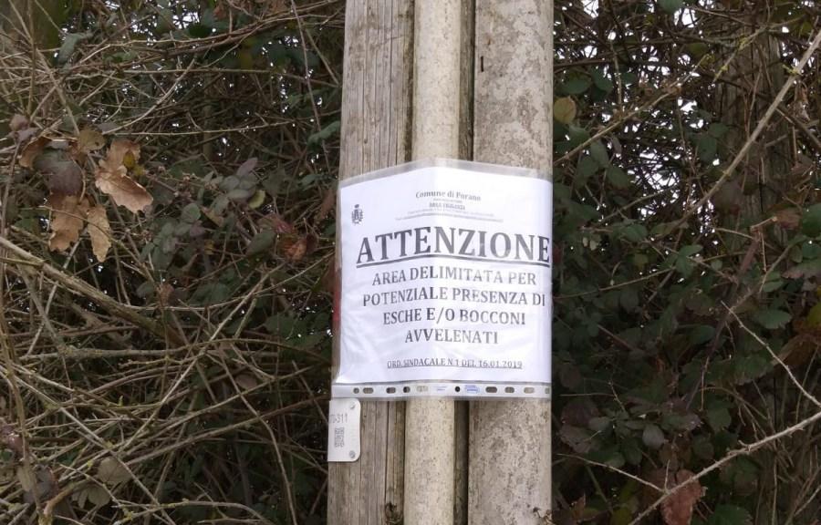 Bocconi avvelenati, il Comune di Porano invita alla cautela. Massima attenzione ai propri animali