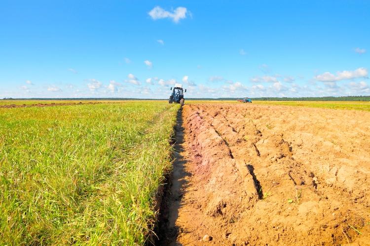 """Programma sviluppo rurale 2014-2020: """"Piena operatività degli uffici regionali per la gestione dei bandi"""""""