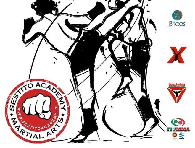Alla Palestra Bricas arriva il primo Workshop di MMA