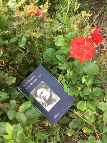 Per #librinellorto 'Una vita come tante' scelto e fotografato da Alessandra Ciarletti