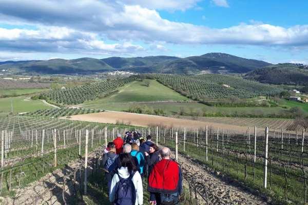 Quattro 'Camminate con gusto' nell'Orvietano