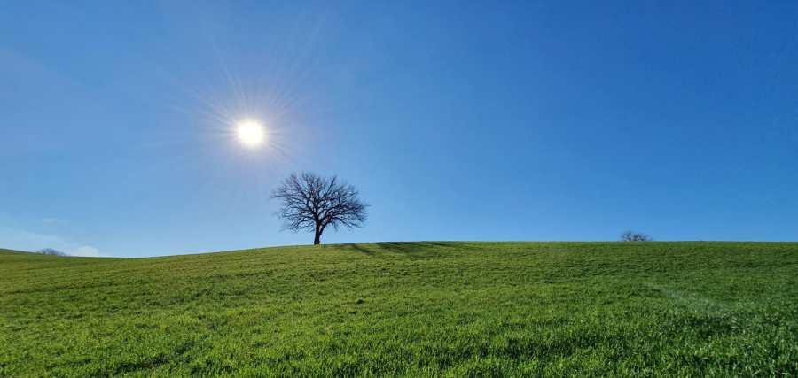 Cammino dei Borghi Silenti, quarto giorno: le colline del sole o della Natura che si compiace di se stessa