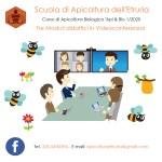 Corso di apicoltura in videoconferenza, quota di partecipazione scontata del 50%