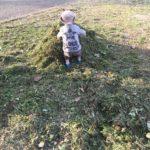 スタッフブログ:<br/ > 今期を振り返る&親子教室、はじめます!