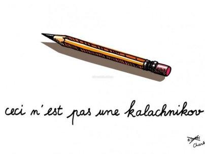 l-hommage-des-dessinateurs-angoumoisins-a-charlie-hebdo_466015_800x600