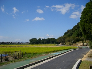 Riding my bike throught the countryside of Azuchi