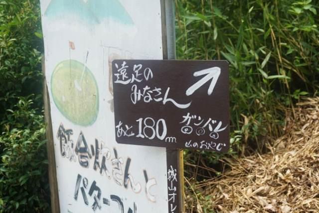 城山オレンヂ園 (7)