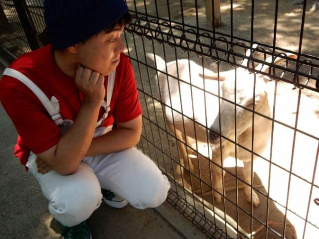 五月山動物園 (26)