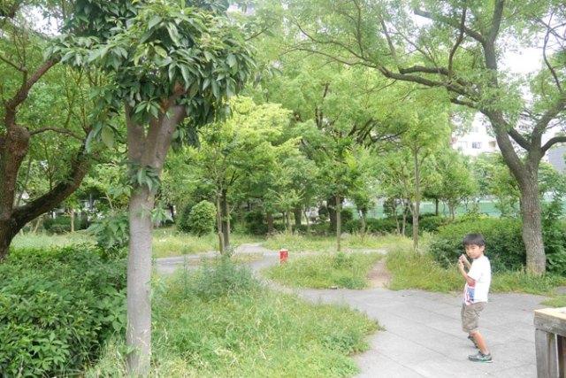 靭公園-(2)