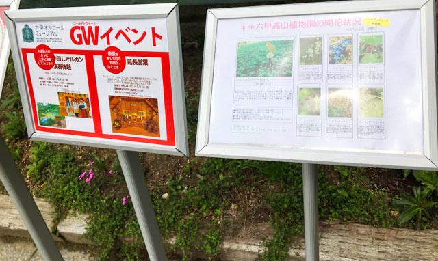 六甲山,六甲オルゴールミュージアム,旬のイベントと六甲高山植物園の見ごろの花の案内,