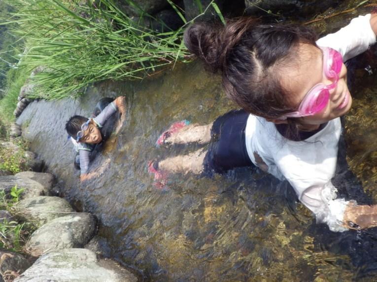いなば西郷自然教室:弓河内班_資料写真09