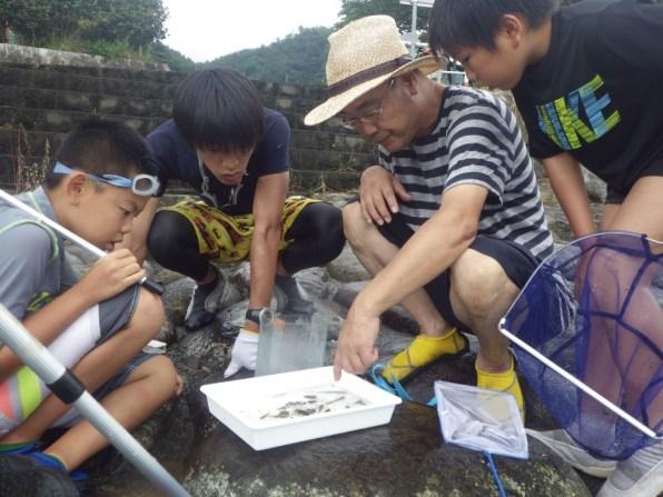 いなば西郷自然教室:弓河内班_資料写真11