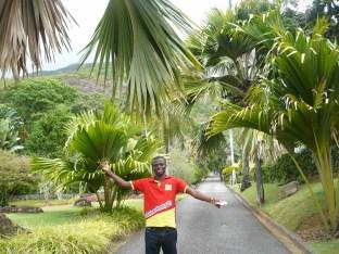 Kehinde's world