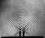 Berenice Abbott. Interference pattern, Cambridge Massachussets (1958-61)