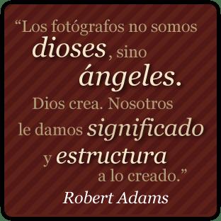 robert_adamss_cita