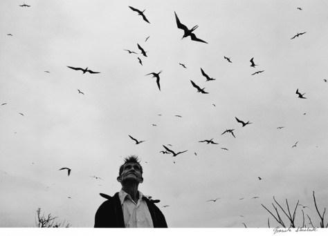 """Graciela Iturbide. """"Señor de los pájaros"""" (Nayarit, 1984)"""