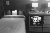 Lee-Friedlander-43