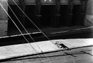 El gran penitene. 1954