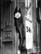 Manuel Álvarez Bravo. El pez grande se come a los chicos (1932)