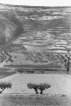 Castilla España 1953 Henri Cartier-Bresson