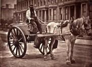 John Tomson. The water cart. (ca. 1873)