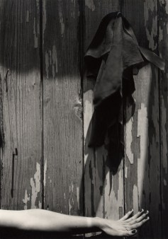 Ensayo para la cámara bien afocado, 1943