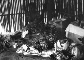 Graciela Iturbide Muerte 16