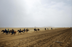 """Horses and jockeys train for the Naadam festival races outside of Ulaanbaatar. Naadam is the annual festival celebrating the """"manly games"""" of wrestling, archery, and horse racing."""