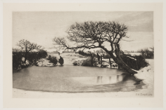 Peter_Henry_Emerson_16