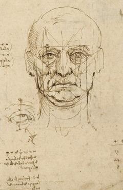 Proporciones del ojo y la cabeza (Leonardo da Vinci)