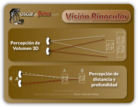 vision_binocular