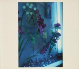 color, Daido Moriyama_43