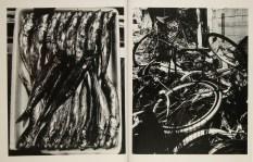 Daido Moriyama, Fragments_308