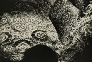Daido Moriyama, light and shadow_57