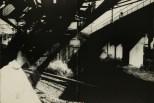 Daido Moriyama, light and shadow_65