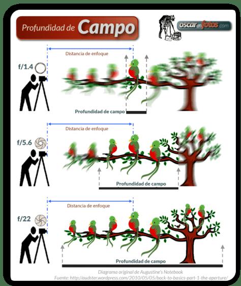 prof_campo_diagrama