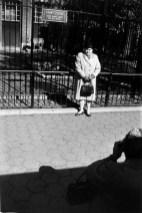 Warri_Winogrand_New York, ca. 1965-_zoo_9