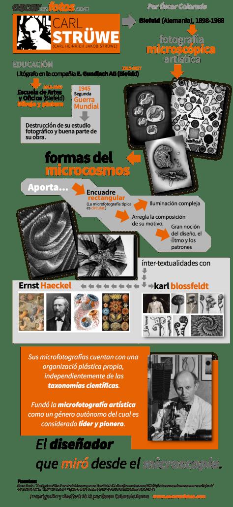 carl_struwe_infografico_bio