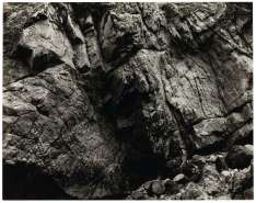 Point Lobos, por Edward Weston