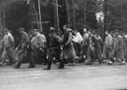 Prisioneros marchan de Dachau a Muenchner en Gruenwald, Alemania, el 29 de abril de 1945. Muchos prisioneros de los campos de concentración fueron trasladados, si alguno no podía mantener la marcha era ejecutado.