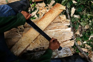 A migrant laborer cleans planks extracted from a palm tree to procure materials to build a home on a piece of fallow state-owned land on the outskirts of Havana June 15, 2012. Thousands of migrant laborers from the east of the country arrive every year to Havana and the outskirts, build homes illegaly to settle, and start a new life and jobs. REUTERS/Desmond Boylan (CUBA)