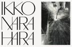 ikko_narahara_25
