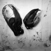 Graciela Iturbide baño de frida 072