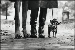 USA. New York. 1974.Felix, Gladys and Rover.Elliott Erwitt