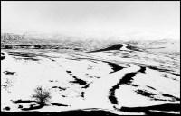 IRAN. 1956.