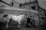 SPAIN. Galicia. Vigo. 1987. The horse that bathes in the sea.